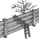 vallas y escaleras