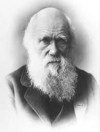 charles darwin biografías